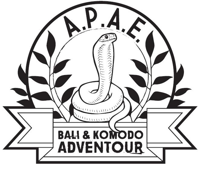 apae adventour